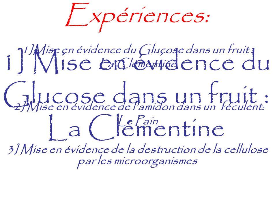 1] Mise en évidence du Glucose dans un fruit : La Clémentine